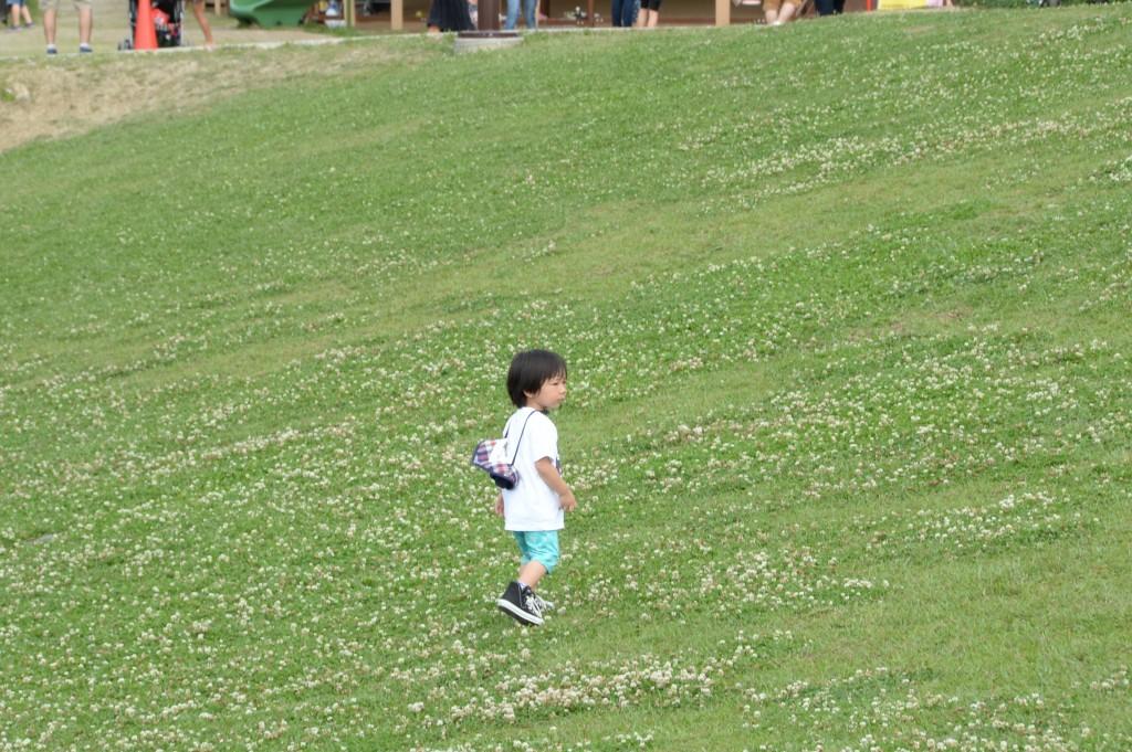 芝生が調度良く、裸足で走り回る子供たちもチラホラ