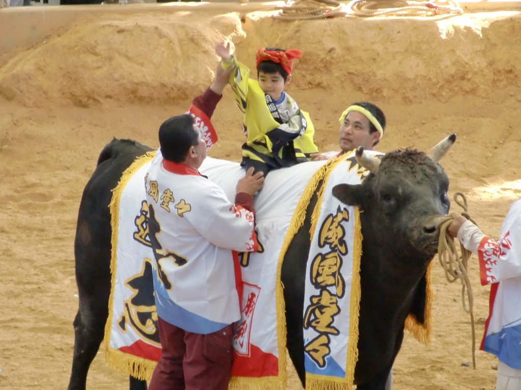 bullfighting03
